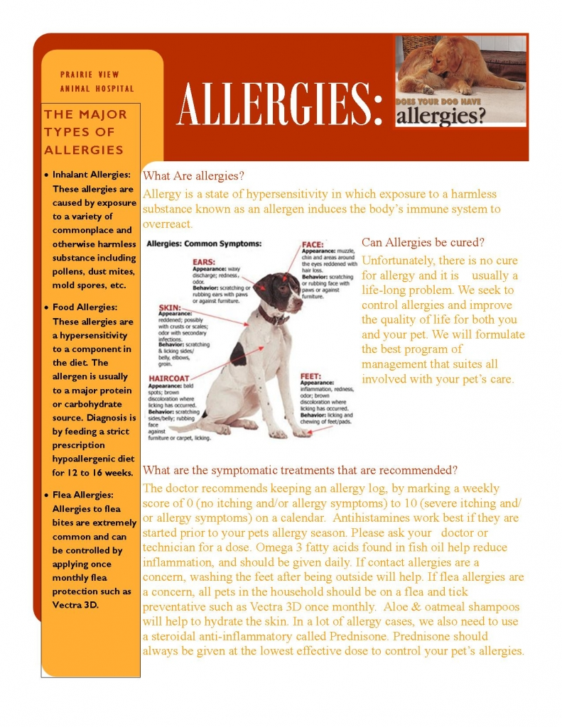 Allergies treated at Prairie View Animal Hospital